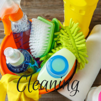cleaning (1)