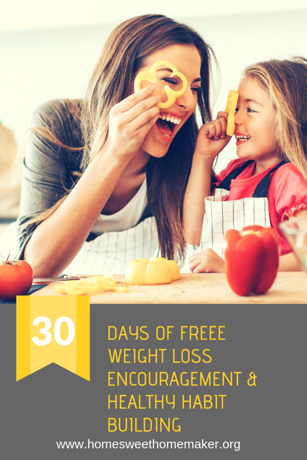busy mom lifestyle life change habits new healthy how to lose weight as a mother make new choices program free weight loss exercise easy fast encouragement advice hacks tips ideas