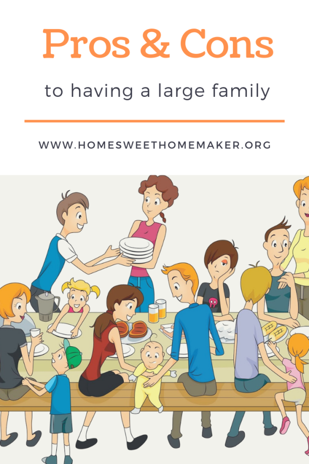 pros and cons to big families how many kids should i have family planning large family